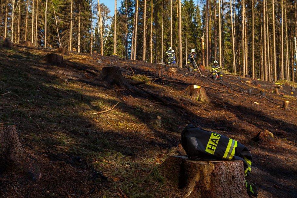 Desítky profesionálních i dobrovolných hasičů likvidovaly požár dvou pasek v katastru obce Bělá u Pecky.