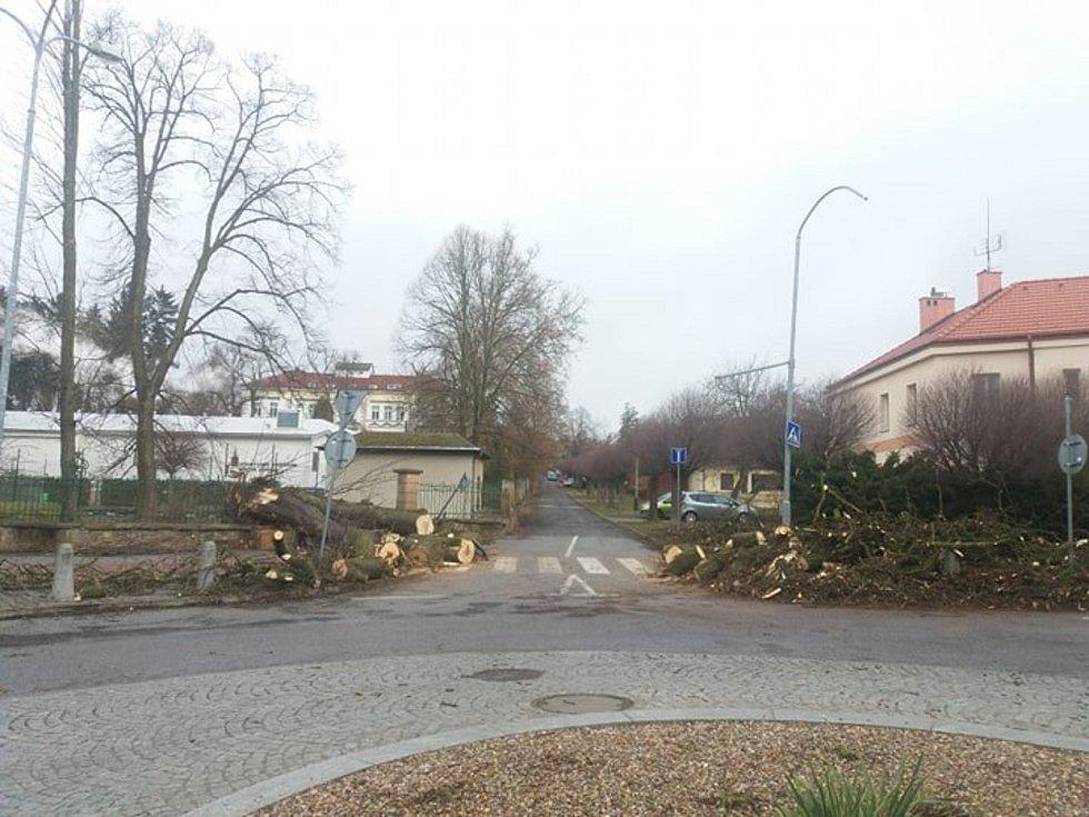 S odklízením popadaných stromů měli práci také v Hořicích u nemocnice i u sokolovny.