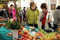 Bělohradské Slavnosti jablek a cibule.