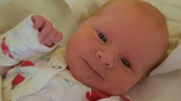 Eliška Langrová se usmívá na svoje rodiče Hanu a Tomáše od 12. února, kdy se narodila s mírou 47 cm a váhou 2,71 kg. Doma v Březovicích se na Elišku těšil desetiletý bráška David.