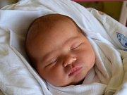 Rozálie Musilová se narodila 8. dubna s mírou 51 cm a váhou 3,8 kg rodičům Tereze Musilové Fickové a Janu Musilovi. Doma v Branžeži už čeká starší bratr Ondřej. Foto: Martina Šepsová