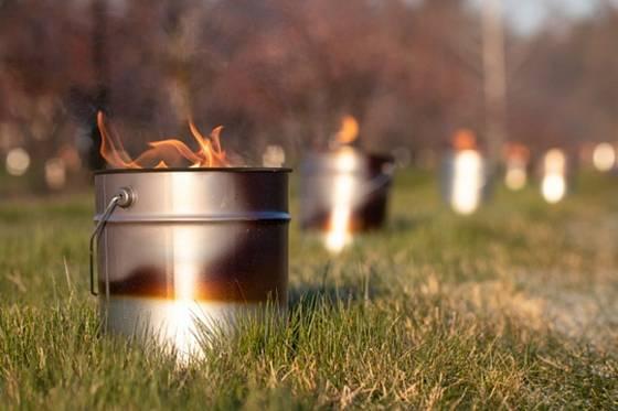 Aby uchránili meruňky před mrazem, zapálili holovouští pěstitelé v sadech svíce.