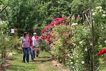 Při Víkendu otevřených zahrad byla přístupná i zahrada manželů Suchardových nedaleko Kumburku.