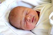 ROZÁLIE FROŇKOVÁ se na svět usmívá od 2. ledna, kdy se narodila s porodní mírou 48 cm a váhou 3,50 kg. Šťastní rodiče Kristýna Kučerová a Tomáš Froněk si svoje miminko odvezli domů do Městce Králové.