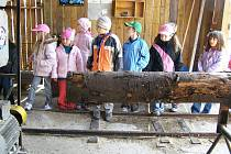 Exkurze v ostroměřské zpracovatelně dřeva.