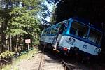 Vlak vykolejil po nárazu do stromu.