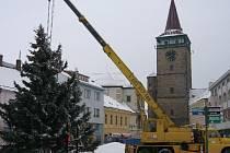 Vánoční strom u Valdické brány.