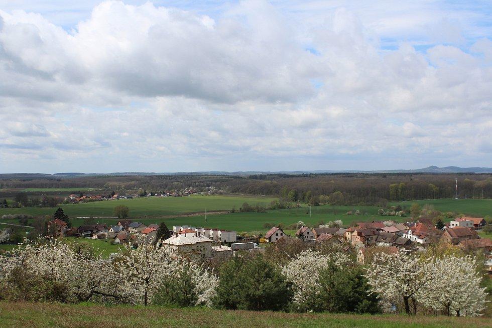 Konecchlumí získalo v roce 2008 Zelenou stuhu v soutěži Vesnice roku za péči o  zeleň a životní prostředí.