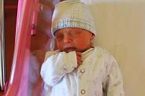 MAGDALÉNA A JAKUB VOLFOVI se narodili 15. ledna Šárce a Michalu Volfovým, a to s váhami 2,48 a 2,52 kg,a mírami 47 a 49 cm.Zatímco Magdalénka se stále čile hlásí o své,Jakoubek klidně pospává a nenechá se jen tak něčím vyrušit.Všichni bydlí v Hořicích
