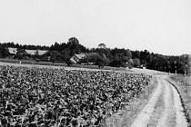 Obec Skařišov v roce 1955, dnes již zaniklá kvůli těžbě písku.