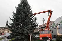 Tady strom teprve ukotvovali, dnes ho konečně rozsvítí.