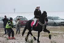 Horseskijöring v Martinicích.