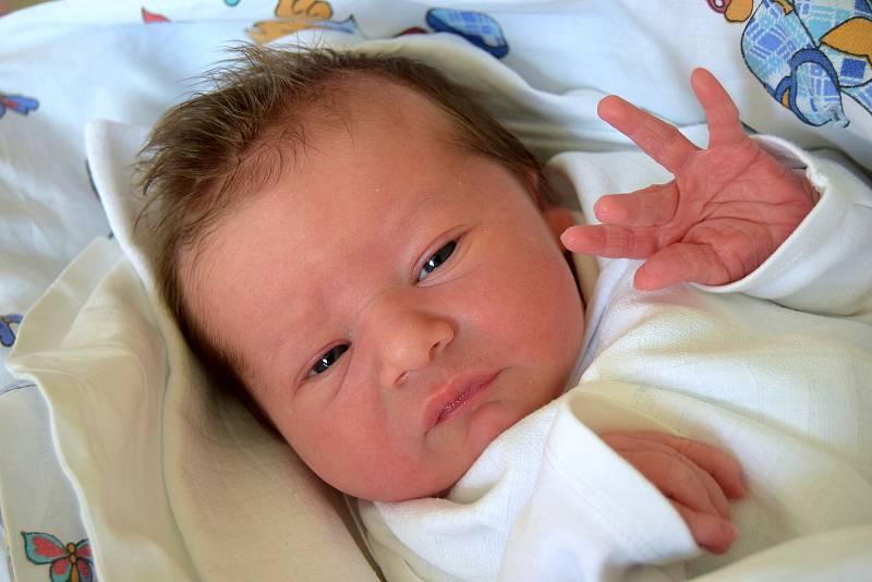 Jindřich Čamek z Nového Bydžova potěšil svým příchodem na svět rodiče Kateřinu Hábovou a Dalibora Čamka. Chlapeček se narodil 21. září 2021, vážil 3370 gramů a měřil 50 centimetrů. Doma má pětiletého brášku Vojtíška.