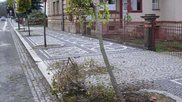 Polámané stromky v bělohradské Lázeňské ulici.