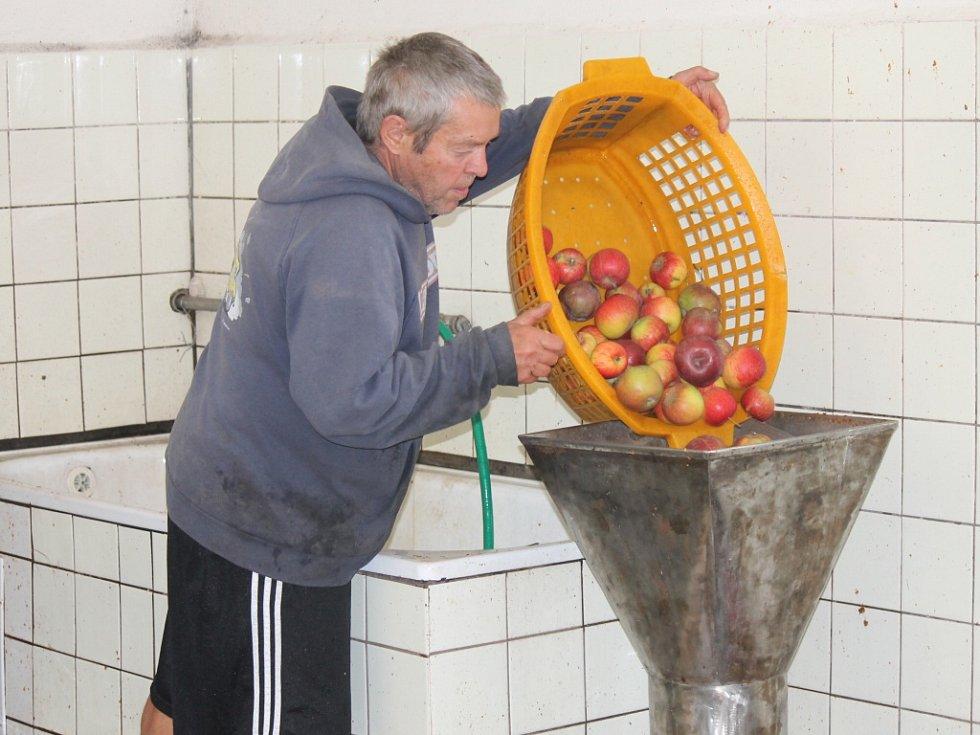 Moštování jablek v Lázních Bělohradě.
