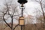 Zvonička ve Svatém Petru.
