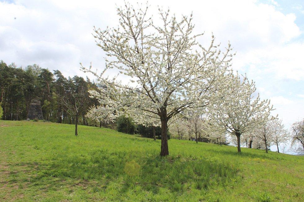 Kostel nad vsí a k němu přilehlá louka a třešňový sad jsou chloubou obce.