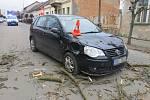 Vzrostlý strom spadl na projíždějící automobil.