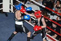 Z turnaje Boxing Warriors Gym.
