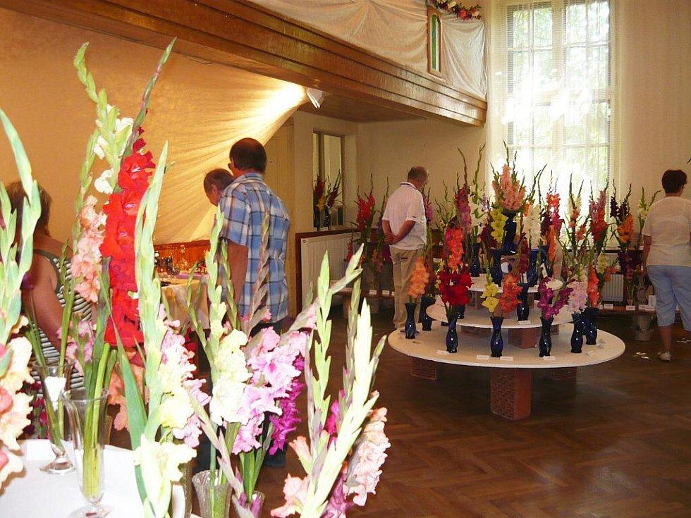 Z výstavy mečíků v Nemyčevsi.
