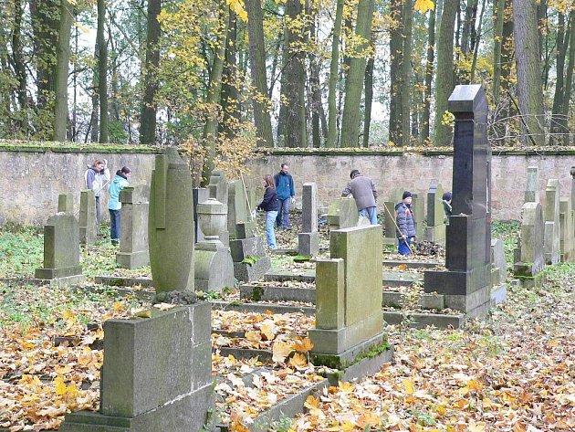 Semilští skauti při úklidu jičínského židovského hřbitova.