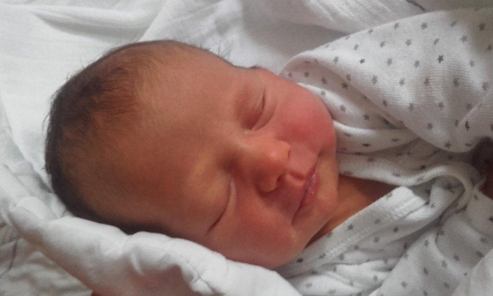 Anna Nováková se narodila v Jilemnici dne 19. června 2021 v 15:26 hodin a vážila 3120 g. Svým příchodem na svět potěšila rodiče Danielu a Lukáše a sourozence Lukáše a Zuzanu. Rodina bydlí ve Dvoře Králové nad Labem.