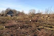 V Bystřici u hřiště byly vykáceny stromy.