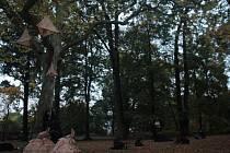 Slavnost stromů ve Valdštejnské lodžii.