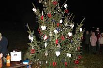 Slavnostní rozsvícení stromku na Stavě.