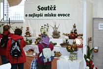Zahrádkářská výstava v Častolovicích.