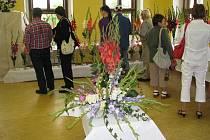 Z nemyčeveské výstavy mečíků a dalších květin.