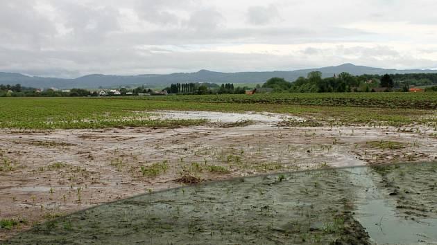 Pole podmáčená povodněmi.