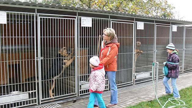 Záchytná stanice pro zaběhlé psy pod Zebínem.