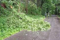 Strom spadlý na silnici mezi Ostroměří a Libínem.