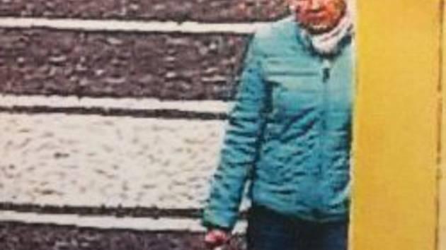 Policie hledá svědkyni. Poznáte ženu na snímku?