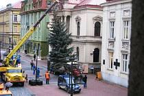 Stavění vánočního stromu na Husovce u Masarykova divadla.