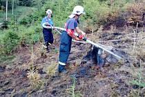 U Úbislavic hořely mladé stromky