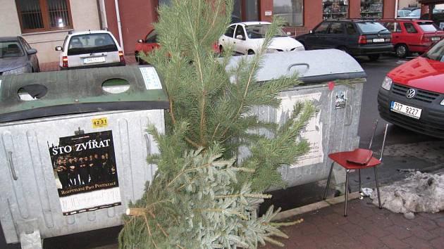 Obyvatelé Jičína ukázněně odkládají staré vánoční stromky ke kontejnerům.