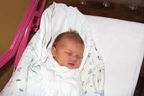 ADÉLA ŠULKOVÁ přibyla do rodiny Kateřiny a Petra Šulkových 13. prosince s porodní váhou 3,1 kg a mírou 49 cm. Doma v Poděbradech na ni již čekala dvouapůlletá sestřička Terezka.