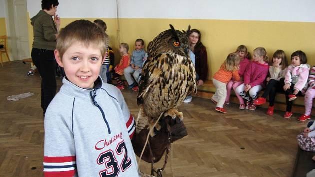 Živí dravci u školáků v Radimi.