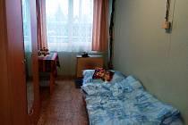 Noclehárna v Čejkovicích u Jičína funguje od listopadu do března.