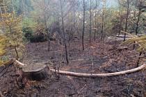 Požár, který vypukl v pondělí odpoledne, měli hasiči do hodiny pod kontrolou.