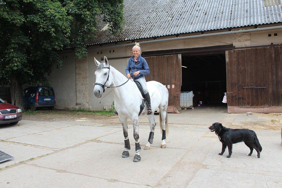 Ivana  Kašpárková, vedoucí jičínského útulku, je nejen skvělou psí mámou a parťačkou, ale do její smečky náleží i tato nádherná charismatická kráska.
