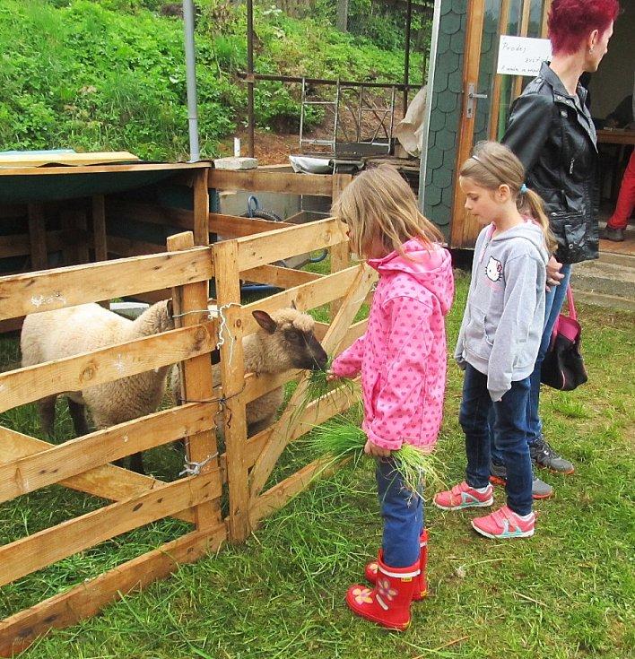 Výstava novopackých chovatelů.