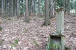 Lesní poutní místo Zlatnice mezi Vidochovem a Borovnicí.