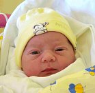ELLA POUROVÁ dělá svým rodičům Petře a Martinovi Pourovým radost od 10. května. Narodila se s porodní mírou 49 cm a vážila 3,60 kg. Doma v Nepolisech Ellu vyhlíží jeden a půl roční bratříček Tobiáš.