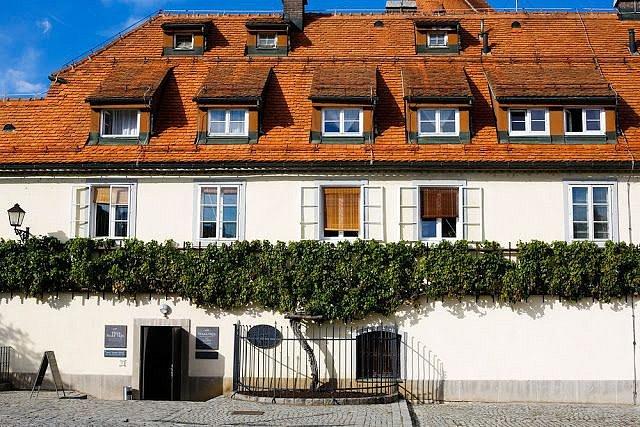 Vinná réva Stará trta v Mariboru rostoucí na domě.