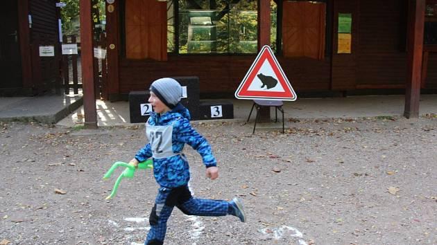 Podzimní Žabí běh na Prachově.