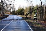 Hasiči v průběhu úterního odpoledne na několika místech odklízeli stromy, které důsledkem silného větru popadaly na komunikace.