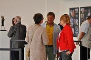 Mezinárodní festival krásných umění v Hořicích